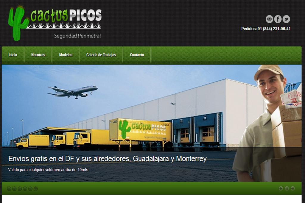 Página web Cactus Picos