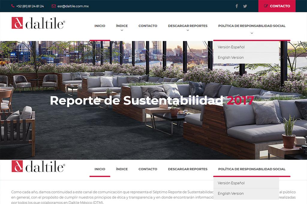 Página web Reporte DTM 2017