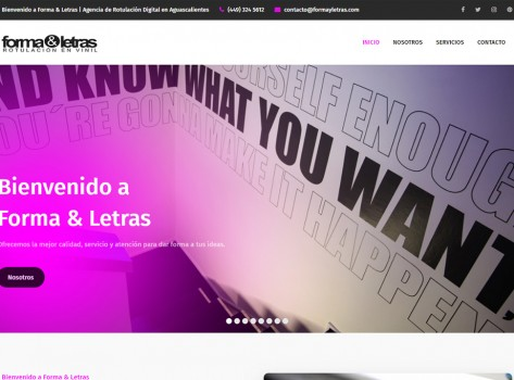 paginaswebaguascalientes165