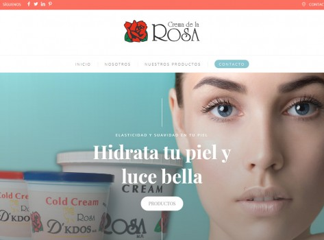 paginaswebaguascalientes166