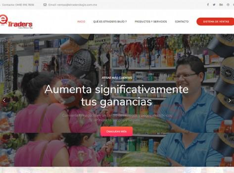 paginaswebaguascalientes177