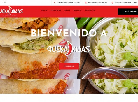 paginaswebaguascalientes184